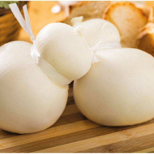 latin's gusto grossiste rungis paris Scamorza blanche x3 mozzarella lait vache fromage italien