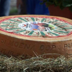 latin's gusto grossiste rungis paris puzzone di moena vache fromage italie